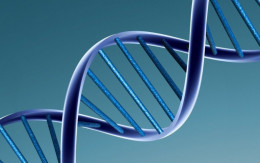 A recent vote in Canada's House of Commons criminalized the practise of genetic discrimination. http://bit.ly/1U9KavY